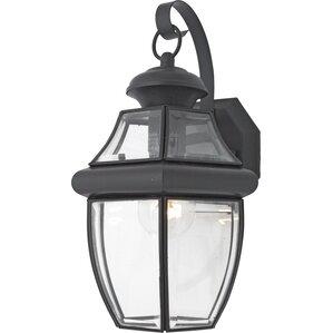 Sylvester 1-Light Outdoor Wall Lantern