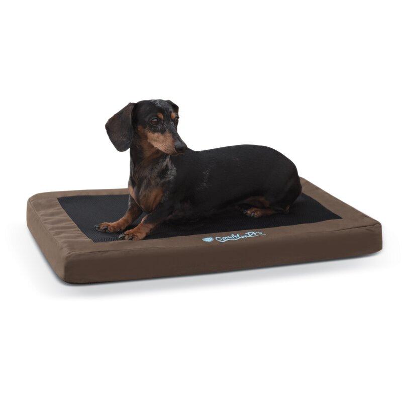 K H Manufacturing Comfy N Dry Indoor Outdoor Dog Bed Wayfair