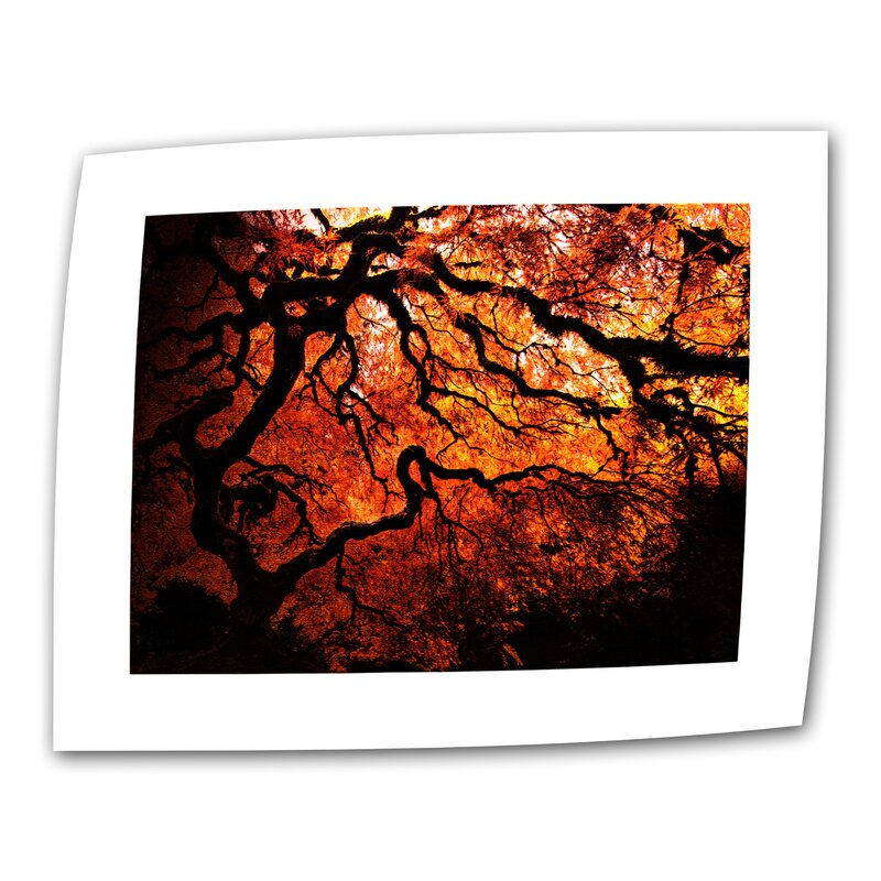 Japanese Tree by John Black Photographic Print on Rolled Canvas