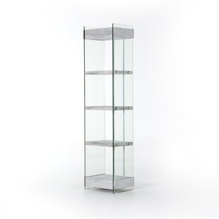 Clear Lucite Bookcase