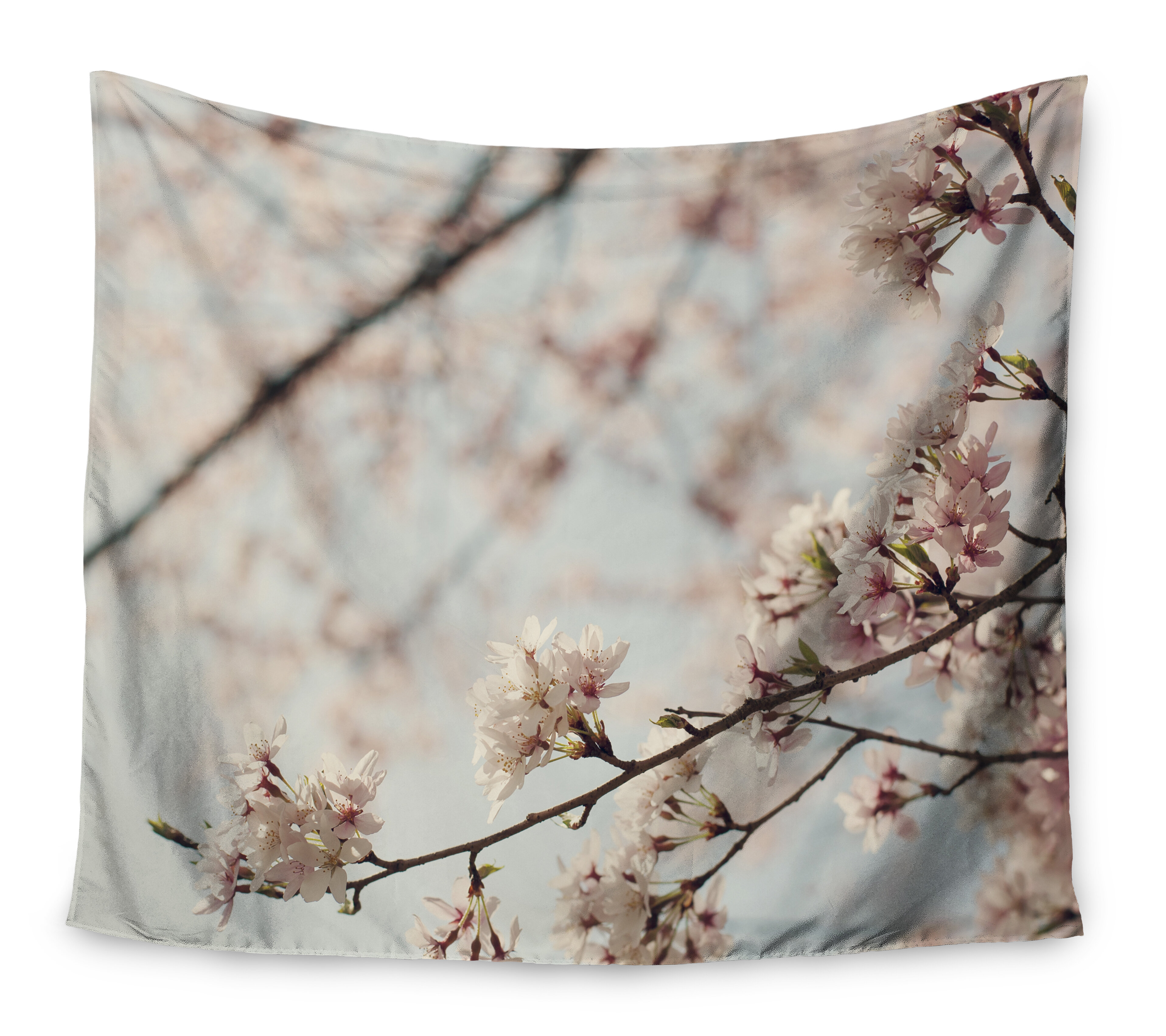 Anese Cherry Blossom By Catherine Mcdonald Wall Tapestry