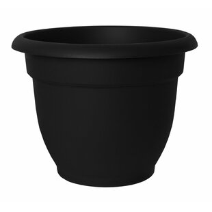 Black white planters youll love wayfair quickview mightylinksfo