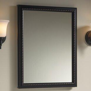 20 X 26 Wall Mount Mirrored Medicine Cabinet With Door