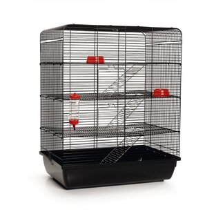 Danil Rat Cage by Archie & Oscar