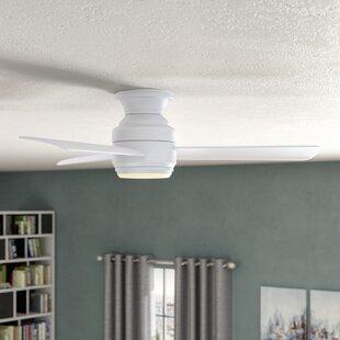 Modern & Contemporary Ceiling Fans | AllModern on painting bedroom ceilings, diy bedroom ceilings, decorating bedroom shelves, master bedroom ceilings, decorating bedroom walls, decorating bedroom furniture,