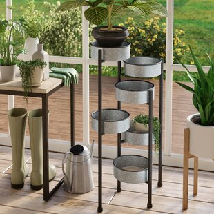 6e1447d63c84 Charters Towers Multi-Tiered Plant Stand