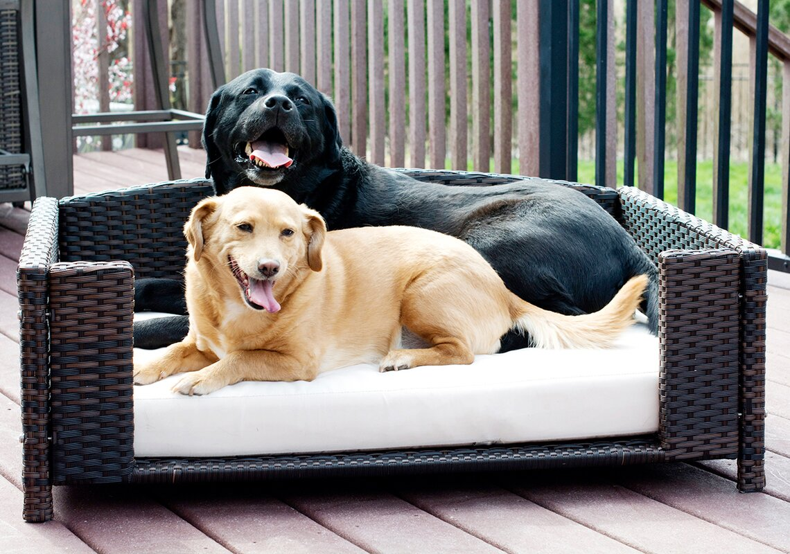 Weihausen Rattan Rectangular Dog Sofa