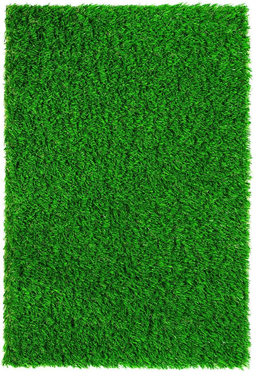 Everlast Turf Diamond Light Spring Lawn Grass Turf Turf Reviews