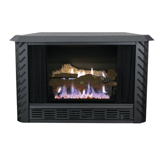 small indoor gas fireplace wayfair rh wayfair com Freestanding Gas Fireplaces Indoor Indoor Outdoor Gas Fireplace