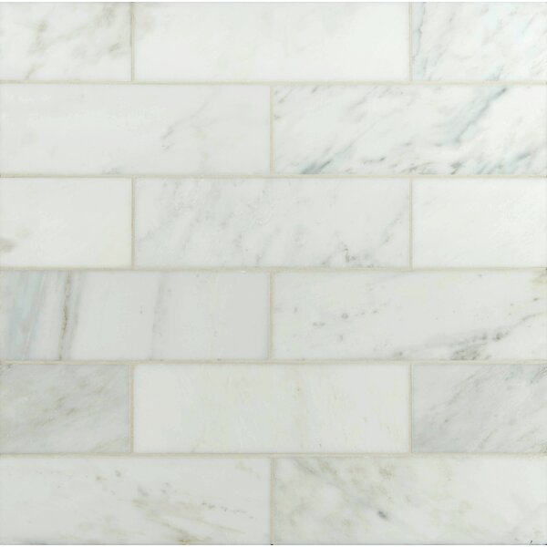 Msi 4 Quot X 12 Quot Polished Marble Tile In Carrara White
