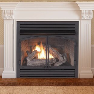 Vent Free Recessed Natural Gas Propane Fireplace Insert