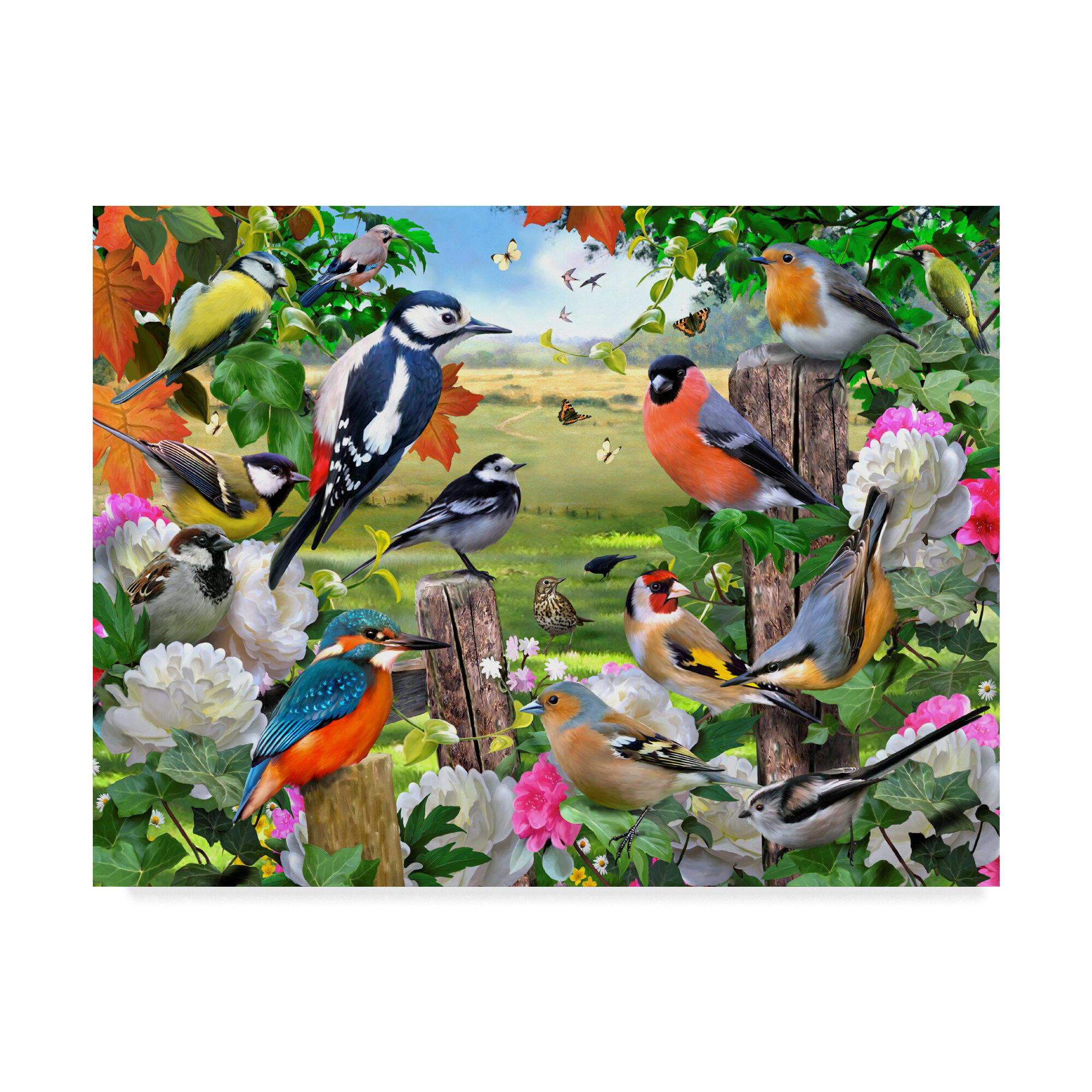 trademark art colorful birds acrylic painting print on wrapped