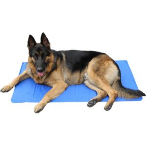 Gel Pad Dog Bed