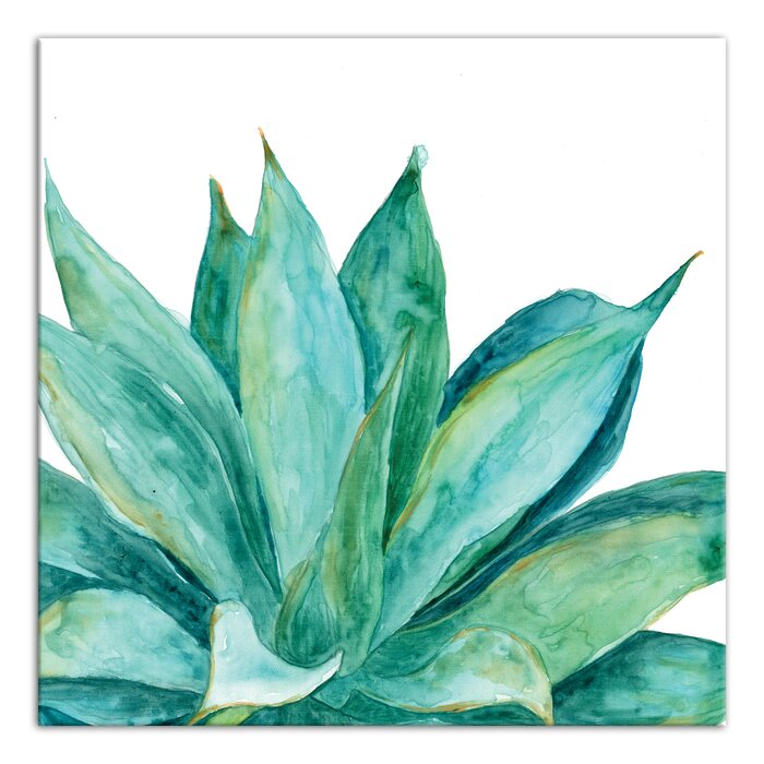 bungalow rose aloe plant watercolor painting print on canvas