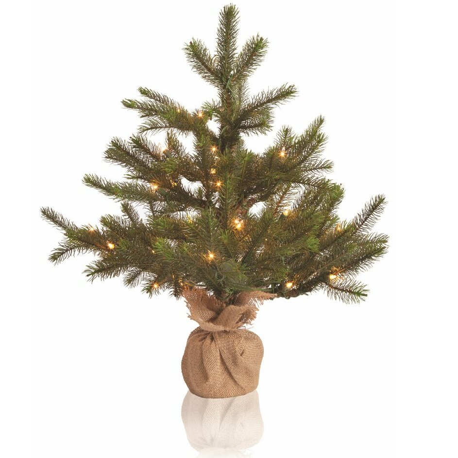 The Holiday Aisle Sierra Lodge 2.2\' Green Noble Fir Christmas Tree ...