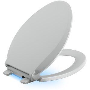 Grey Toilet Seats Youll Love Wayfair - Light grey toilet seat