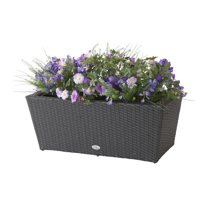 Dmc Vista Resin Planter Box Reviews Wayfair Ca