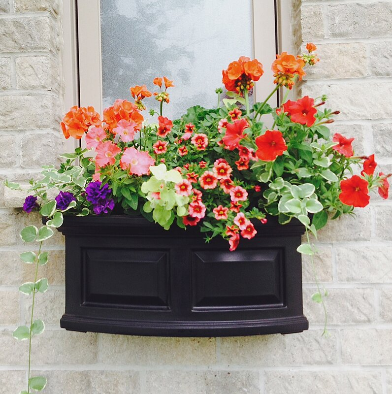 Dog House With Window And Flower Box