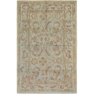 One Of A Kind Mart Hand Knotted 10 X 16 9 Wool Light Blue Cream Area Rug