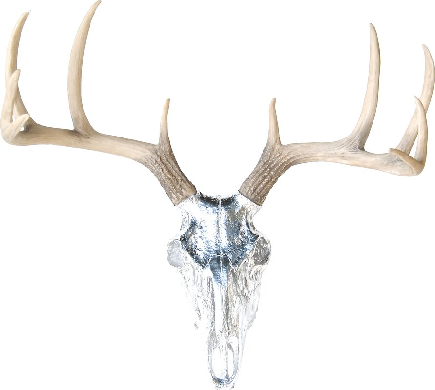 near and deer faux taxidermy buck skull wall d cor