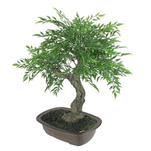 Artificial Decorations Country Style Indoor Pot Culture Artificial Tree Basket Miniature Fake Flower Bonsai Tree Plants For Home Office Wall Decoration Up-To-Date Styling Festive & Party Supplies