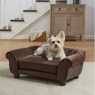 Lonnie Cleo Dog Sofa With Cushion