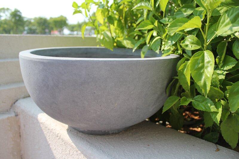 Modern Concrete Pot Planter & Reviews | AllModern