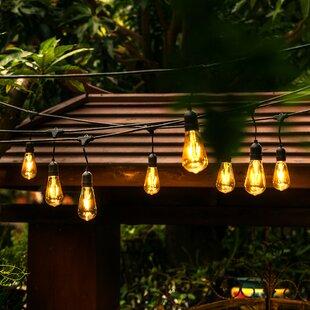 Outdoor string lights youll love wayfair 24 light 48ft globe string lights workwithnaturefo