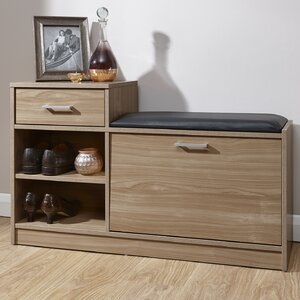 Alyn 6 Pair Shoe Storage Cabinet