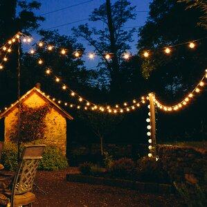 25 Light Globe String Lights