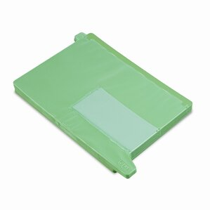 End Tab Out Guides with Pockets, Poly, Letter, 25/Box