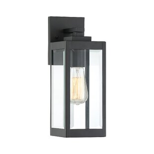 Viles Outdoor Wall Lantern