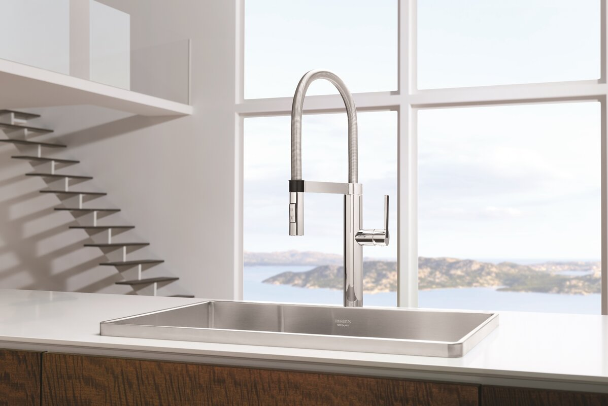 Blanco Linus Pull Out Single Handle Kitchen Faucet & Reviews | Wayfair