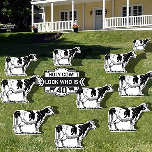 11 Piece Holy Cow 40th Birthday Yard Decoration Sign Set