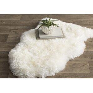 Find The Best White Rugs Wayfair