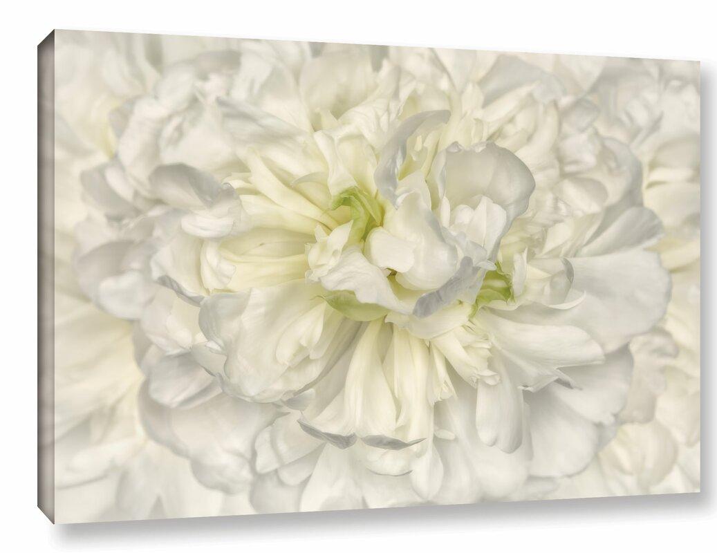 Willa Arlo Interiors Pure White Peony Painting Print On