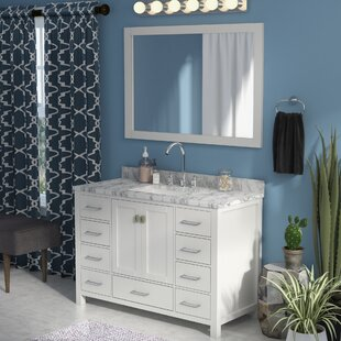 Quickview Willa Arlo Interiors Raishon 48 Single Bathroom Vanity