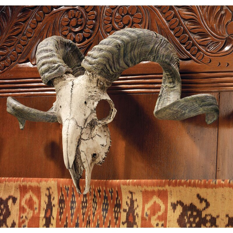 Design Toscano Corsican Ram Skull And Horns Trophy Wall Décor Reviews Wayfair