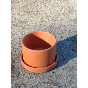 Purnell Fat Walled Garden Terracotta Pot Planter