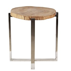 Stainless Frame End Table by Ibolili