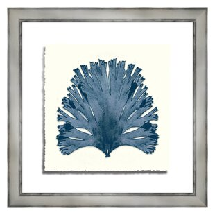 Coral I Framed Graphic Art