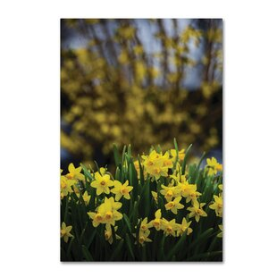 Daffodil Hanging Decoration with Décalques Handmade Real Wood Daffodils Yellow