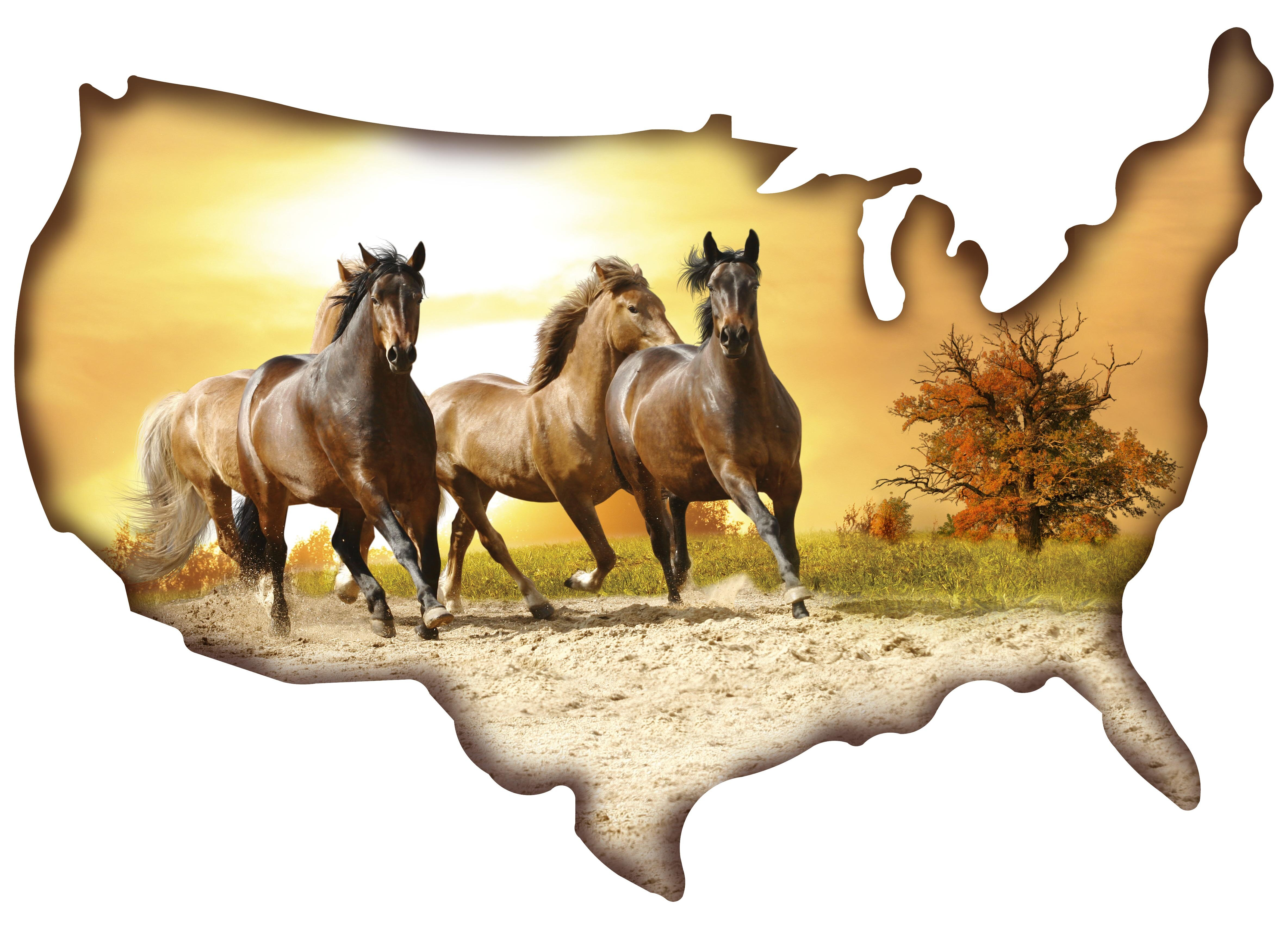 Beautiful Metal Wall Art Horses Image - The Wall Art Decorations ...