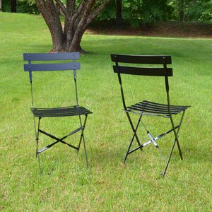 Vasser Folding Patio Dining Chair (Set of 2)