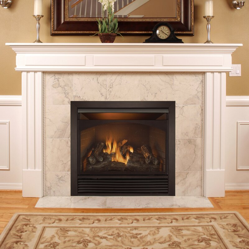 Full Size Dual Fuel Ventless Natural Gas Propane Fireplace InsertDuluth Forge Full Size Dual Fuel Ventless Natural Gas Propane  . Ventless Fireplace Natural Gas. Home Design Ideas