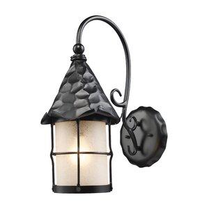 Rustica 1-Light Outdoor Wall Lantern
