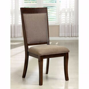 Amd Contemporary Dining Chair (Set of 2)