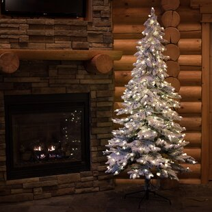 flocked alpine 6 spruce trees white artificial christmas tree with 300 clearwhite lights with stand - Small Flocked Christmas Tree