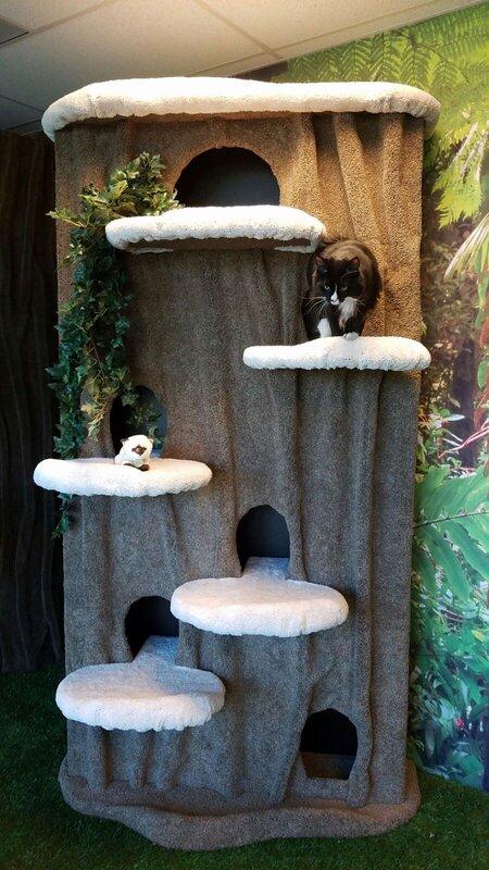 Kittycatcondos 96 Quot Cat Condo Amp Reviews Wayfair