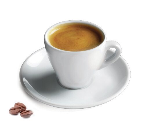 6 Quot Porcelain Espresso Cup Amp Reviews Joss Amp Main